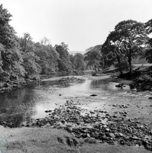 River Wharfe, Bolton Abbey
